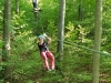 Climbing Forest 2018